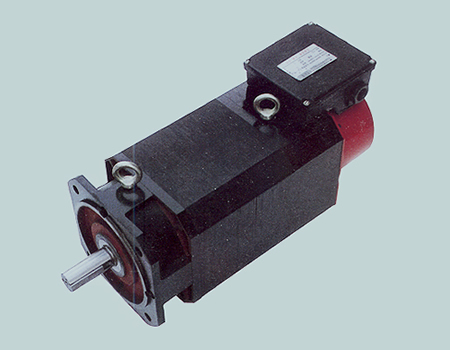 YZZ Series Principle Axis Three-phase Induction Motor